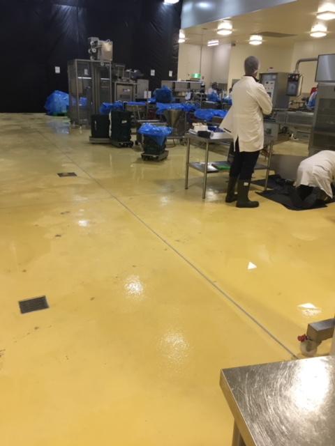 Beak and Johnston Potato Floor Area - Industrial Flooring Solutions - Remedial Building Services
