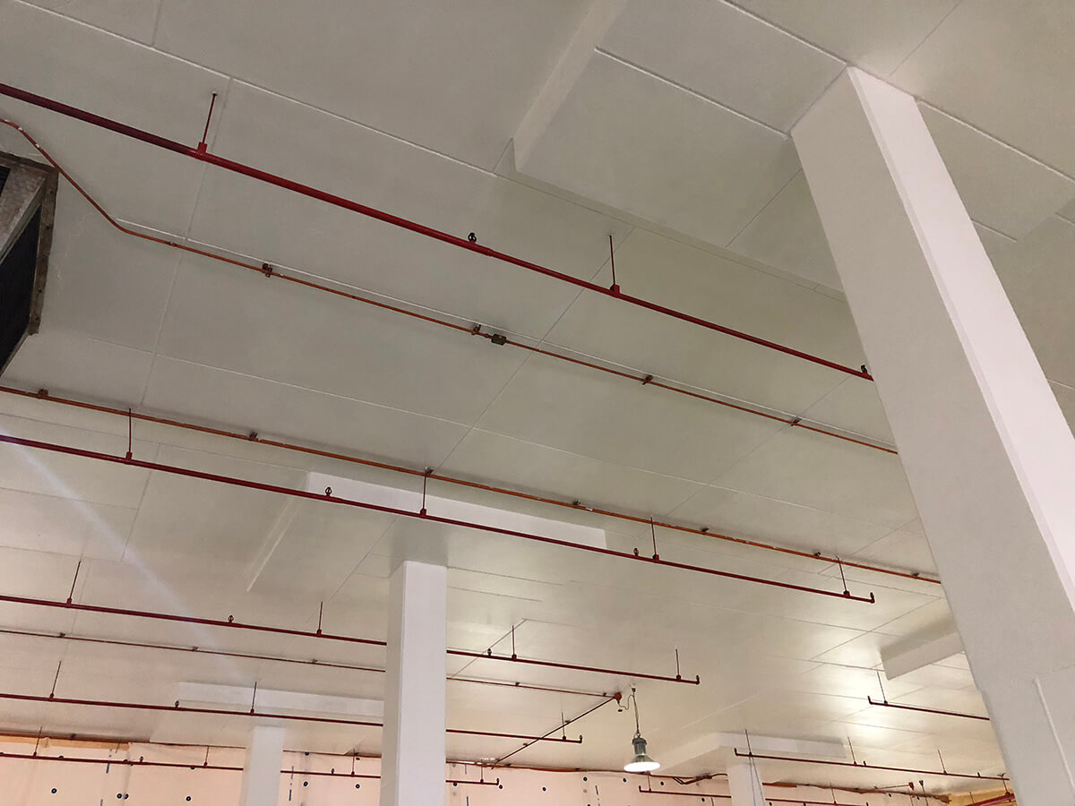 Protective Coating - Fire Rating Solutions - Remedial Building Services
