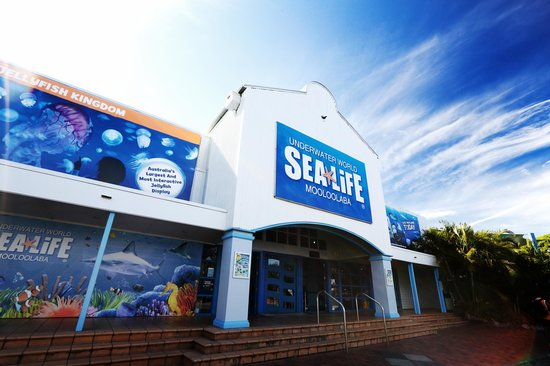 Underwater World, Mooloolaba - Concrete Repair - Remedial Building Services