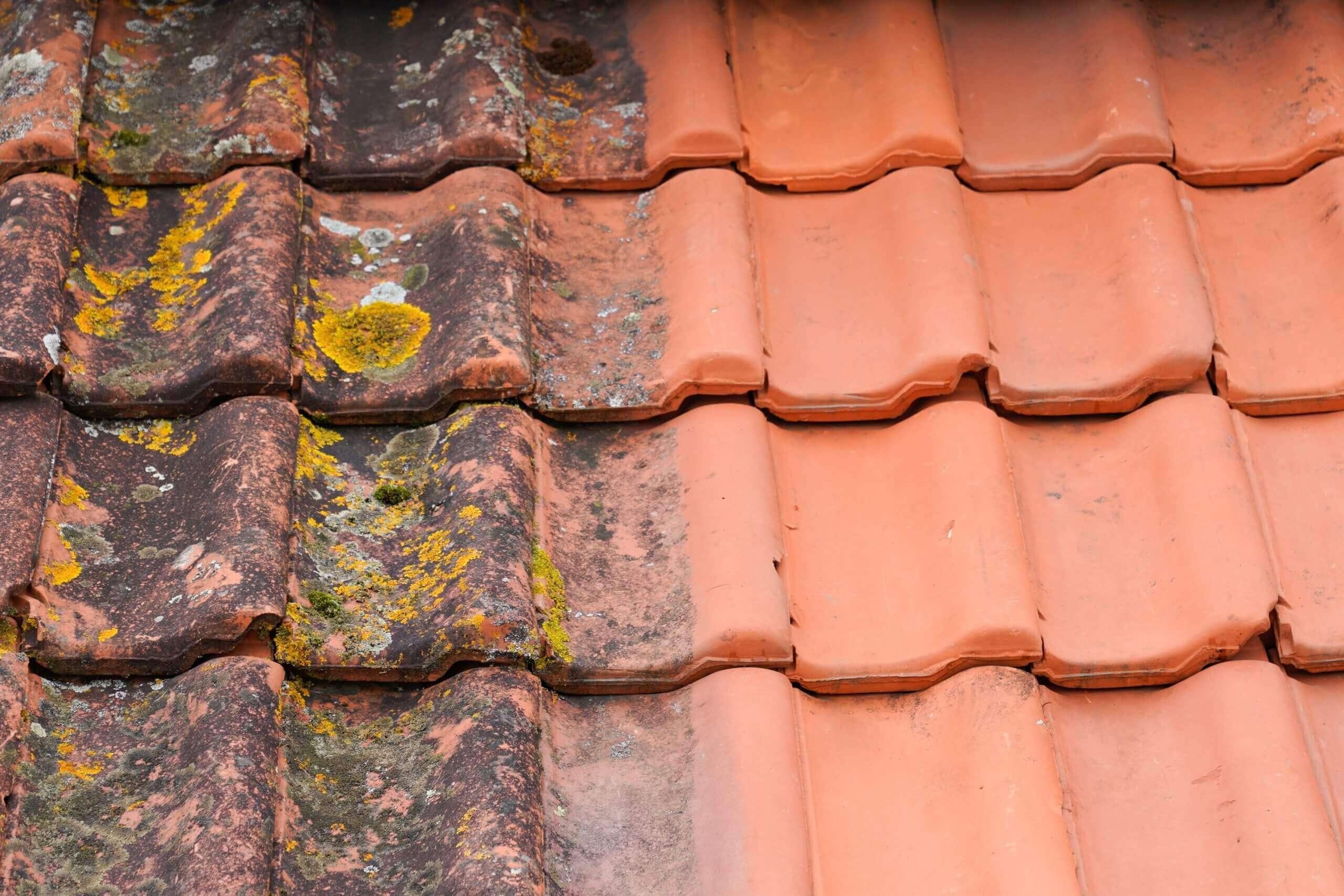 Tile Roffing Restoration - Flooring Solutions - Remedial Building Services